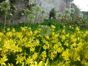 Flowers in Walled Garden at Castle Howard