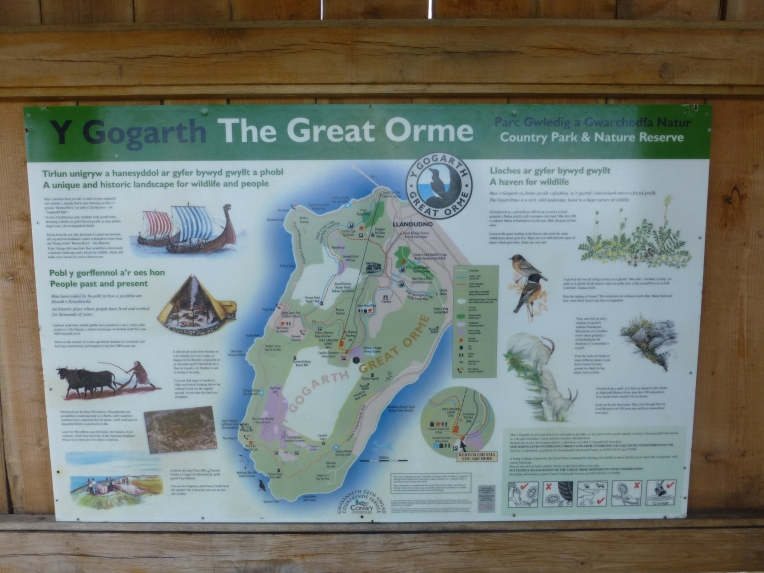The Great Orme Information Board